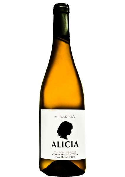 Alicia 2013