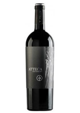 Atteca 2010